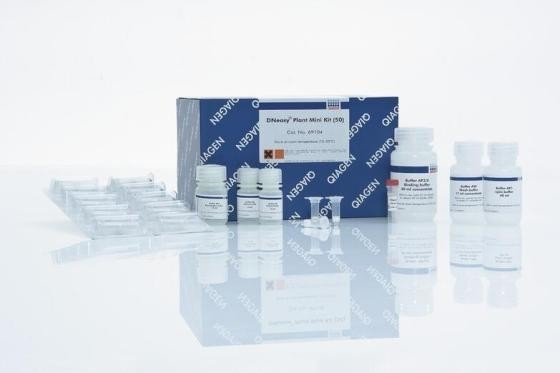 牛呼肠孤病毒(Reo)ELISA检测试剂盒
