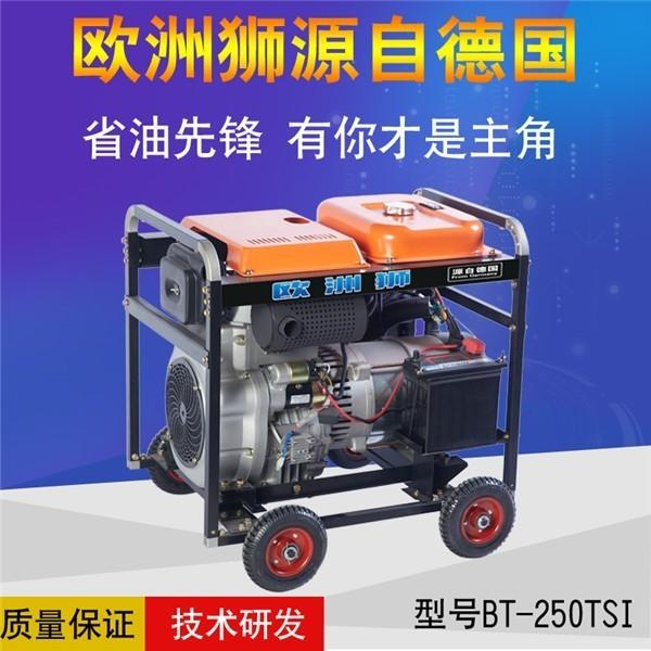 250A自发电柴油发电电焊机配置