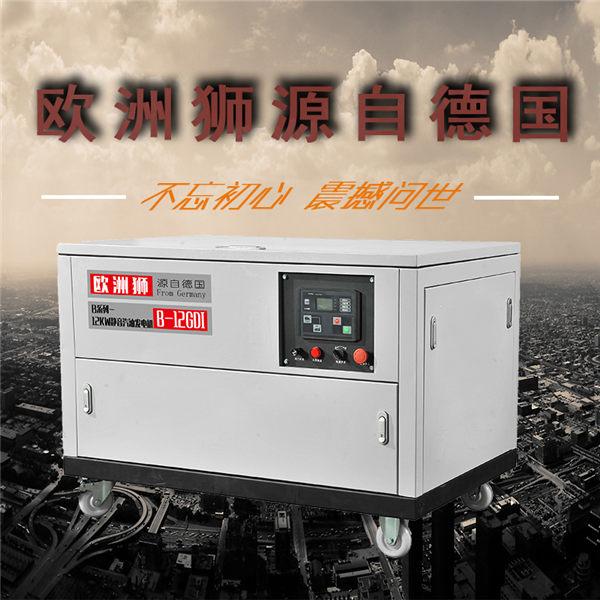 上海12千瓦汽油发电机,静音汽油发电机