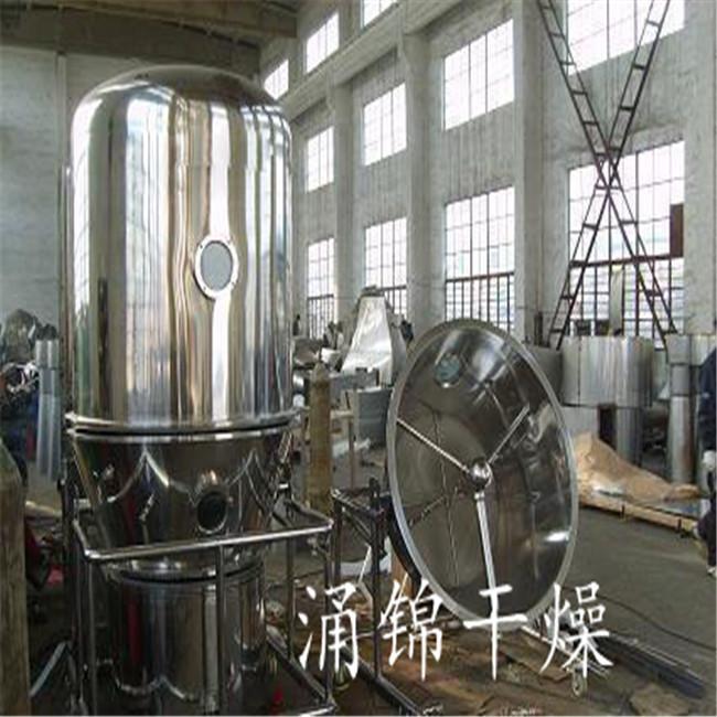 片剂颗粒专用高效沸腾