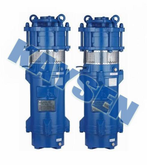 进口不锈钢潜水泵(进口水泵品牌)