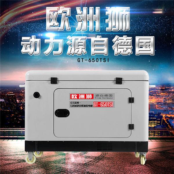 欧洲狮6kw静音柴油发电机配件