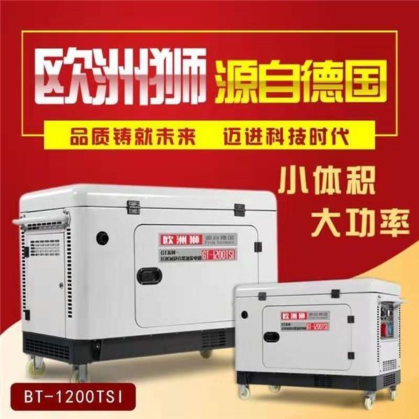 欧洲狮5kw小型柴油发电机带冲洗机