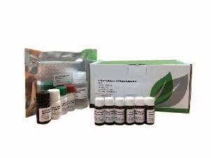 Evergreen黄曲霉毒素M1快速检测试剂盒