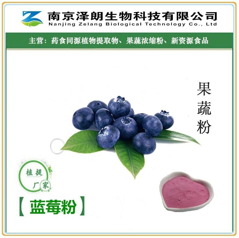 供应蓝莓粉
