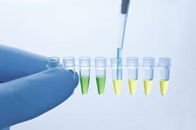 使用序列特异性探针进行一步法real-time RT-PCR,用于基因表达分析