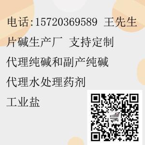 水处理专用副产纯碱 山东副产纯碱 河南副产纯碱 天津 浙江废碱