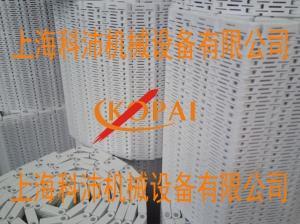 5997塑料网带网带