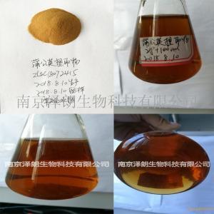 蒲公英浓缩粉 代加工蒲公英粉 OEM代加工 固体饮料 液体饮料