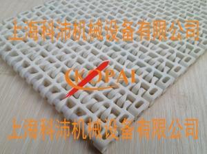1100塑料网带