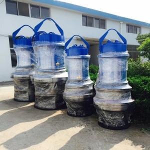 天津每小時1000立方大流量軸流泵