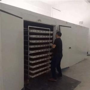 羊肚菌热泵烘干机