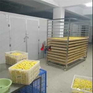 皇菊烘干机 热泵烘干设备 空气能厂家