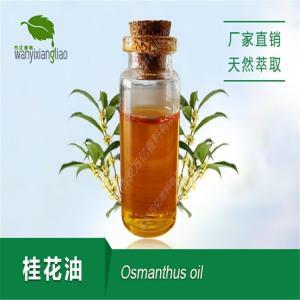 桂花精油 桂花净油osmanthus essential oil天然萃取厂家直销