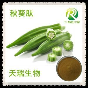 秋葵肽 秋葵多肽80% 小分子活性肽 秋葵提取物