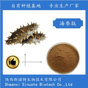 海参多肽 60% 海参肽粉 斯诺特生物 产品图片