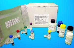 豚鼠源性成分PCR检测试剂盒