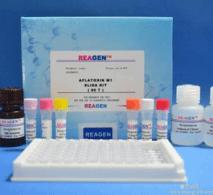 霍乱弧菌O139型染料法荧光定量PCR试剂盒