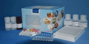 牛源性成分PCR检测试剂盒