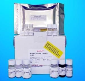 猪源性成分PCR检测试剂盒
