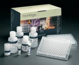 小鼠VEGF试剂盒;血管内皮细胞生长因子ELISA试剂盒