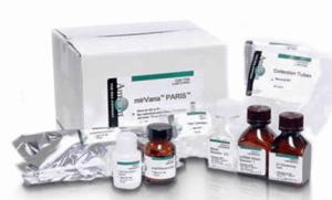 小鼠VCAM-1试剂盒;血管细胞黏附分子1ELISA试剂盒