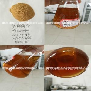 银耳粉 银耳浓缩粉 工厂生产 代加工提取 定制生产