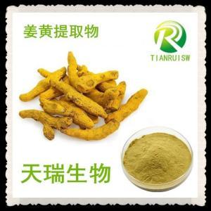 姜黄提取物 10:1浓缩提取姜黄粉 厂家直供