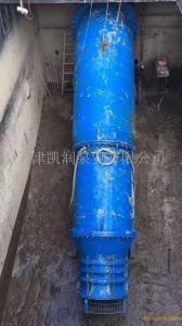 斜式安裝潛水軸流泵