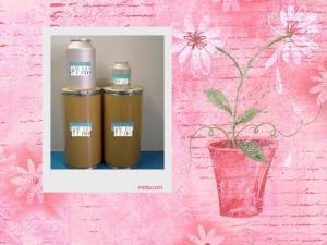 79-81-2维生素A棕榈酸酯原料药厂家
