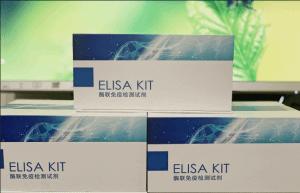 尿-蛋白(UP)ELISA试剂盒 产品图片