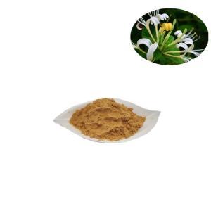金银花提取物-绿原酸