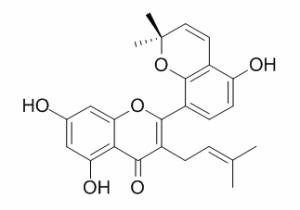 桑皮酮A厂家 CAS:62949-77-3