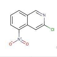 3-氯-5-硝基异喹啉   CAS号:10296-47-6