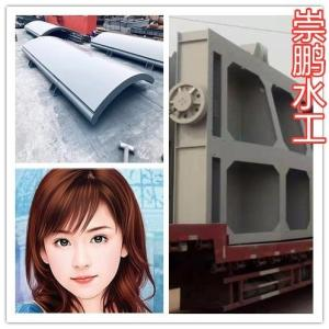 弧形钢制闸门厂家