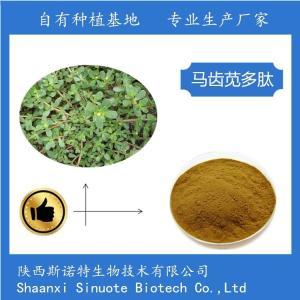 马齿笕多肽粉 80% 马齿苋小分子肽 产品图片