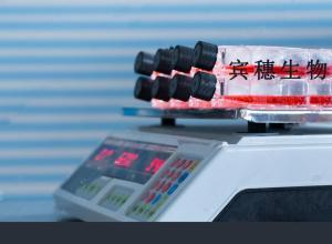 HCT-15细胞:人结肠癌细胞 产品图片