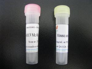 转化生长因子α(TGFa)多克隆抗体(小鼠)