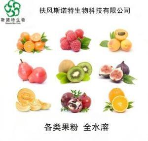 火龙果粉  水溶性好 品质保证