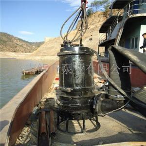 加2个搅拌器船用潜水抽沙泵