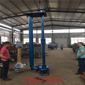 沉淀池煤泥泵-電動立式煤泥泵-液下固定煤泥泵