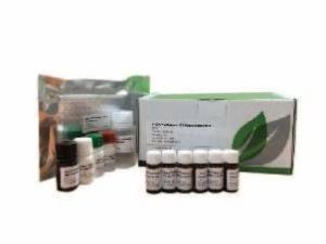 Evergreen黄曲霉毒素B1高灵敏试剂盒-谷物及豆基配方食品 产品图片