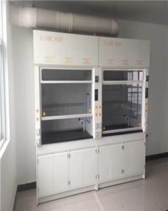 實驗室防酸堿通風柜價格.PP通風櫥廠家