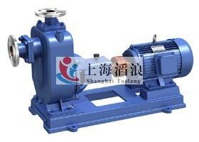自吸泵,ZX單級自吸泵,臥式自吸泵,清水自吸泵