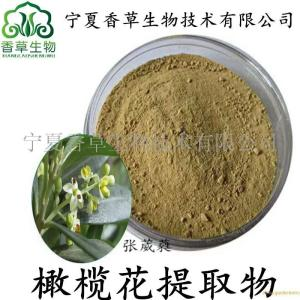 橄榄花提取物价格 橄榄果汁粉 橄榄花超微粉500目 宁夏 产品图片