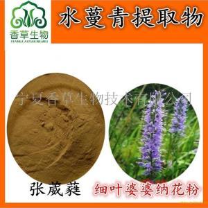 野生原料水蔓青提取物10:1 细叶婆婆纳速溶粉 功效与作用 产品图片