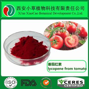 番茄提取物/番茄紅素 1%~10%  廠家現貨供應番茄紅素