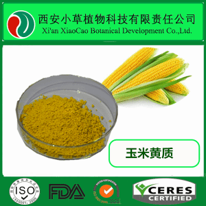 玉米黃質 玉米黃素 1%~20%  玉米提取  廠家直銷