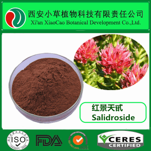 红景天甙5% 红景天苷  红景天提取物 10338-51-9
