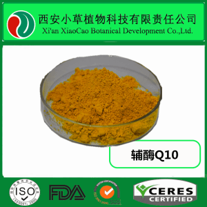 輔酶Q10 98%含量 泛醌10  食品級別  脂溶性